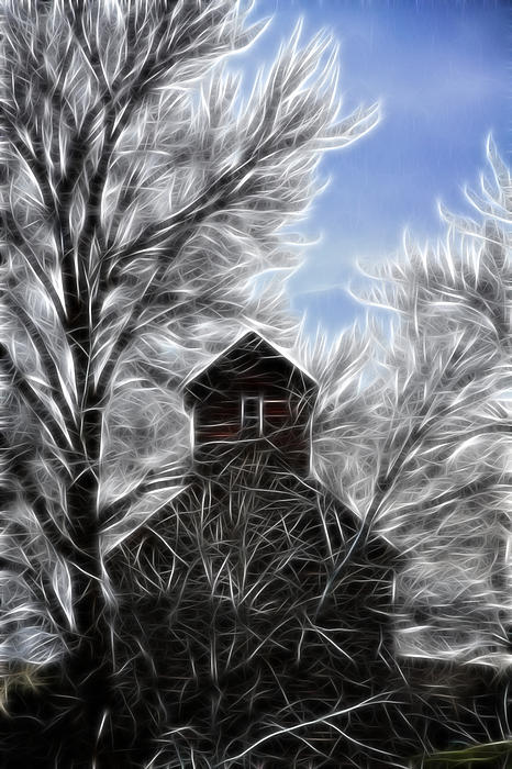 Tree House Print by Steve McKinzie