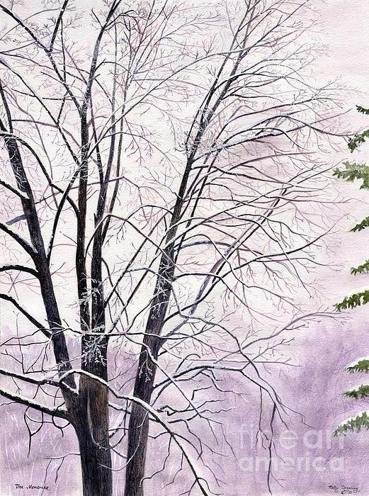 Melly Terpening - Tree Memories