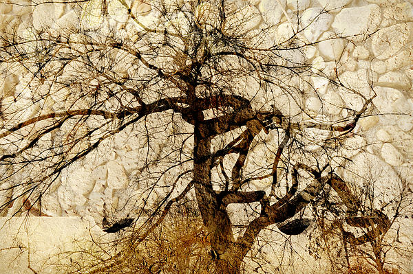 Tree Of Life  Print by Ann Powell