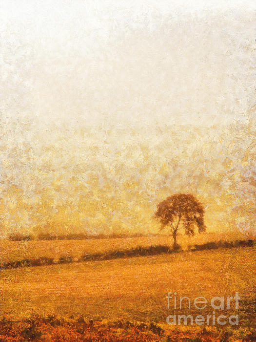 Tree On Hill At Dusk Print by Pixel  Chimp