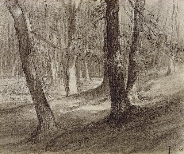 Trees In A Forest Print by Jean-Francois Millet