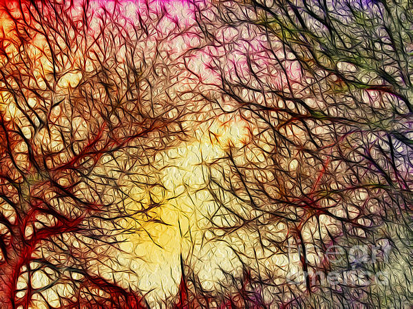 Trees Of The Four Seasons Print by Kaye Menner
