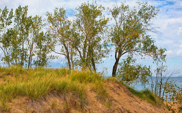 John Bailey - Trees on a Sand Dune Overlooking Lake Michigan