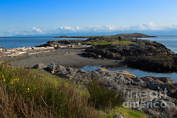 Trial Island And The Strait Of Juan De Fuca II Print by Louise Heusinkveld