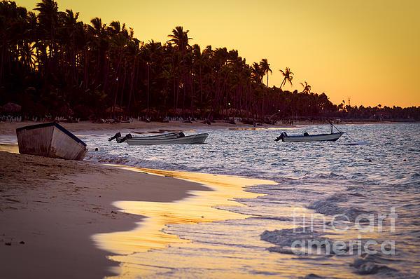 Tropical Beach At Sunset Print by Elena Elisseeva