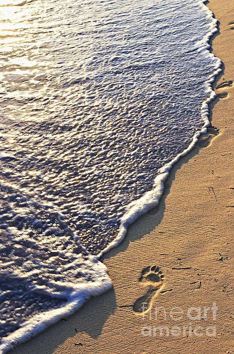 Tropical Beach With Footprints Print by Elena Elisseeva