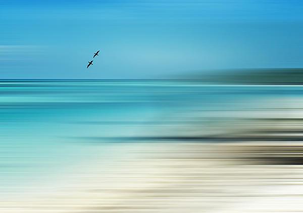Tropical Cove Horizon Print by Deborah Smith