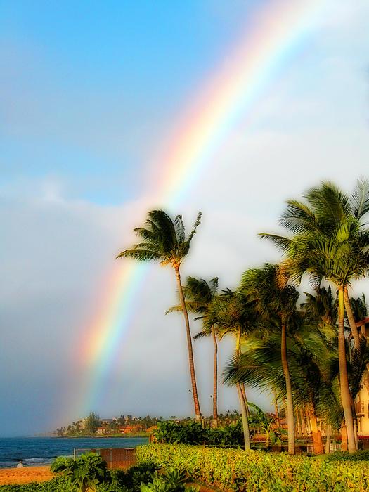 Tropical Dreamin' Print by Lynn Bauer