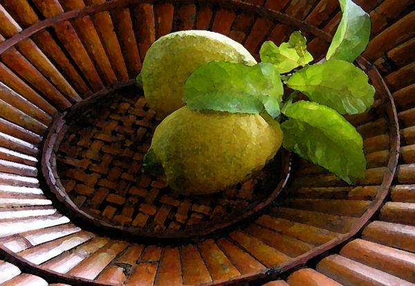 Tropical Lemons Print by James Temple