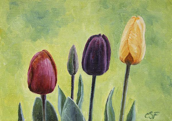Tulip Trio Print by Crista Forest