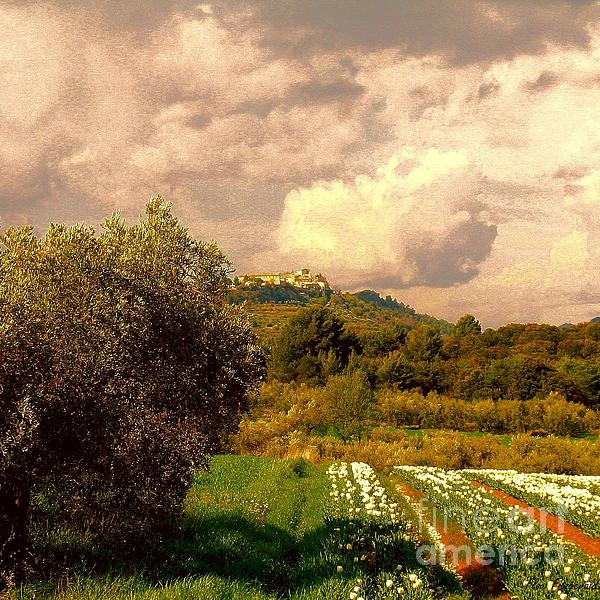 Tulips Field And Lurs Village In Provence France Print by Flow Fitzgerald