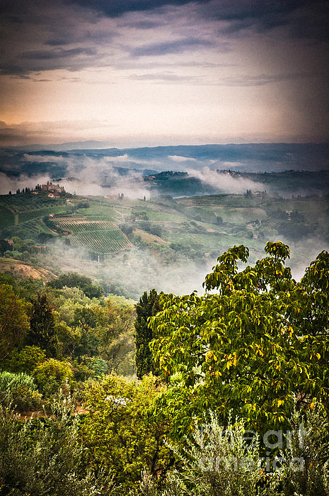 Tuscan View Print by Silvia Ganora