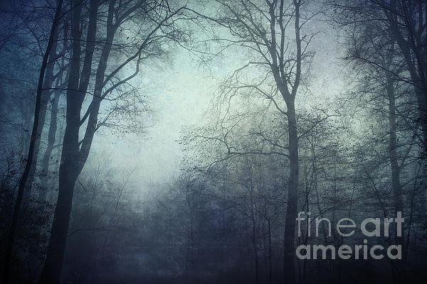 Twilight Blue Print by Dirk Wuestenhagen