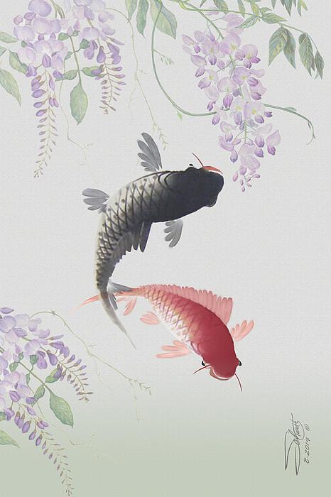Matthew Schwartz - Two Koi and Wisteria Blossoms