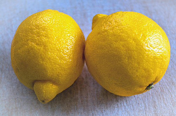 Two Lemons Print by Roger Reeves  and Terrie Heslop