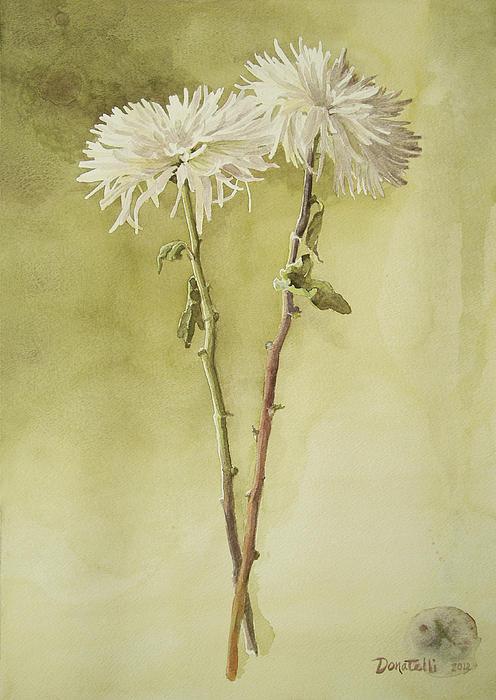 Two White Mums Print by Kathryn Donatelli