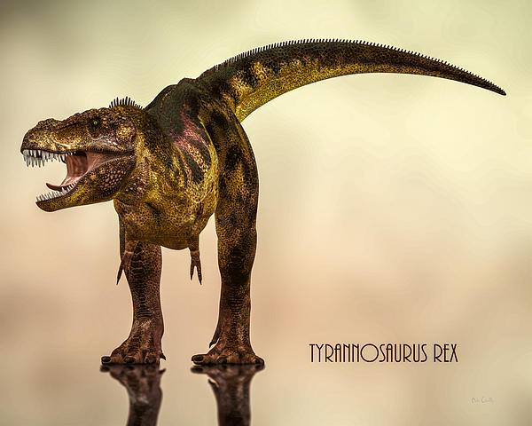 Tyrannosaurus Rex Dinosaur  Print by Bob Orsillo