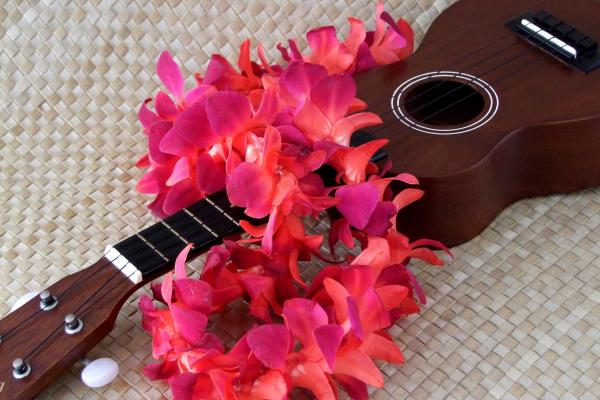 Mary Deal - Ukulele and Red Lei