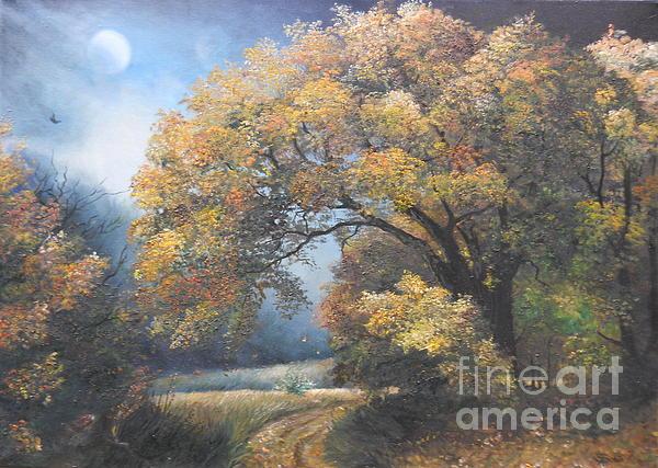 Sorin Apostolescu - Under the moonlight