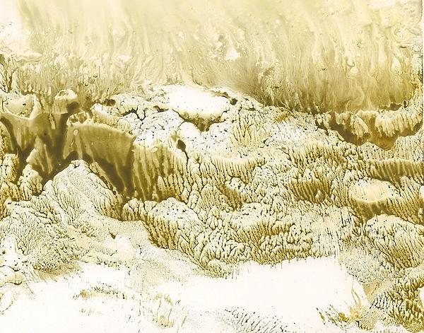 Undersea Iv Print by Debra LePage