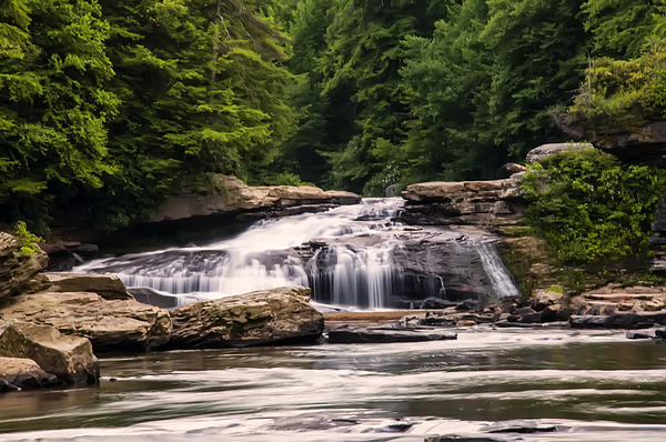 Chris Flees - Upper Swallow Falls