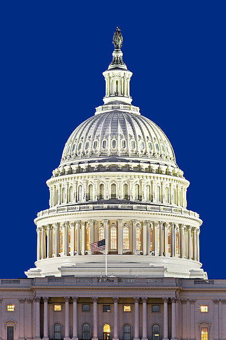 Us Capitol Dome Print by Susan Candelario