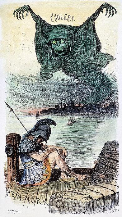 U.s. Cartoon: Cholera, 1883 Print by Granger