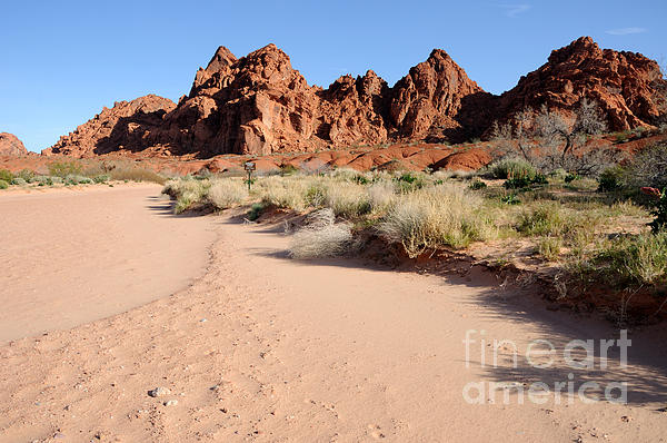 Valley Of Fire Wash Print by Gary Whitton