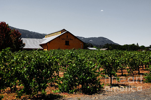 Valley Of The Moon Sonoma California 5d24485 V2 Print by Wingsdomain Art and Photography
