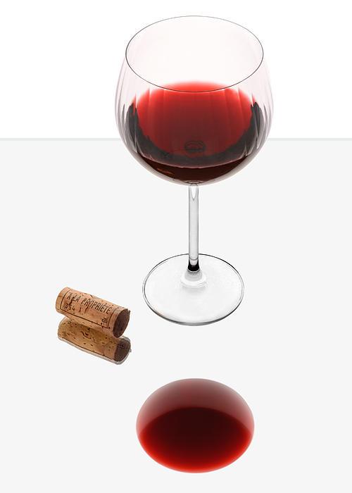 Vampire Wine Glass Print by Dennis James