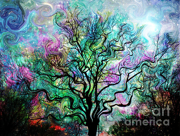 Van Gogh's Aurora Borealis Print by Barbara Chichester