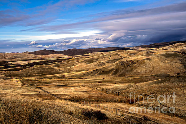Vast View Of The Rolling Hills Print by Robert Bales