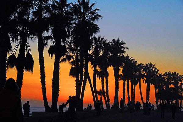 Lynn Bauer - Ventura Boardwalk Silhouettes