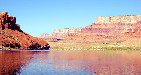 Vermillion Cliffs And Colorado River In Morning Light Print by Douglas Taylor