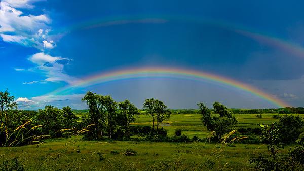 Vernon Marsh Double Rainbow Print by Randy Scherkenbach