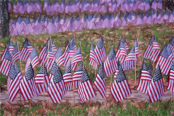 Joan Carroll - Veterans Day Display Color