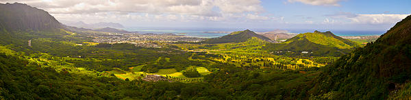View From Nuuanu Pali Print by Matt Radcliffe