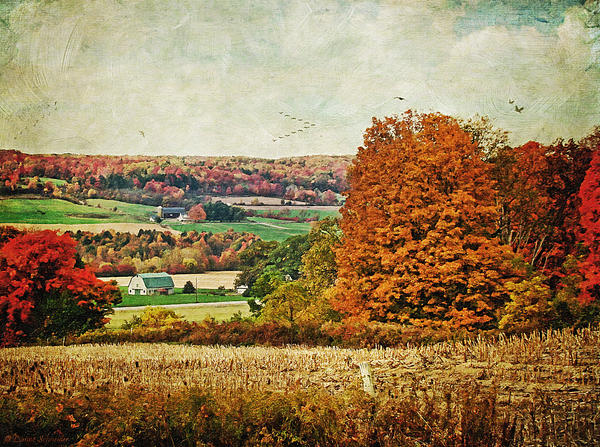 View From The Hill... Print by Lianne Schneider