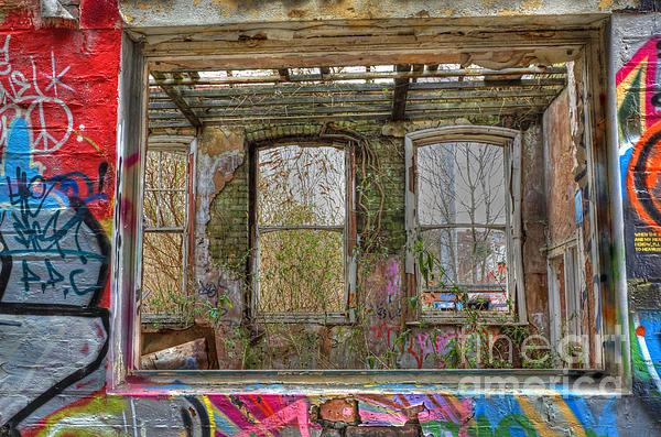 View Through A Window Print by David Birchall