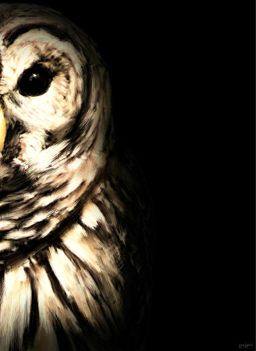 Vigilant In Darkness Print by Lourry Legarde