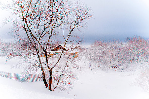 Village Under The Snow. Russia Print by Jenny Rainbow