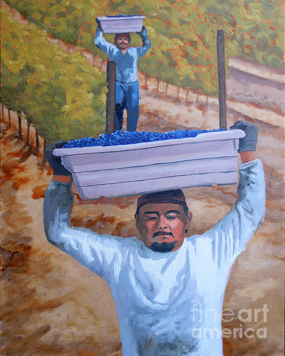 Vineyard Harvest II Print by Donna Schaffer