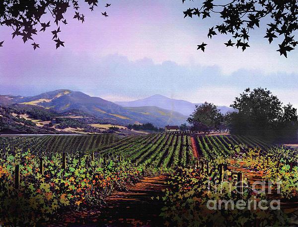 Vineyard Napa Sonoma Print by Robert Foster