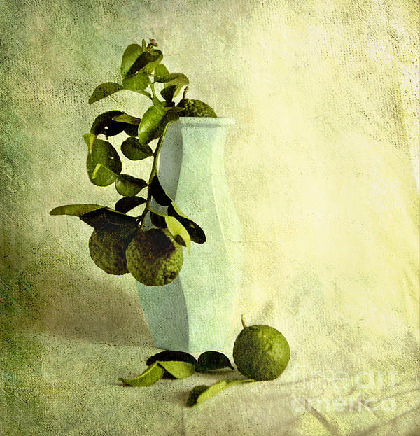 Vintage Limes Print by Linde Townsend