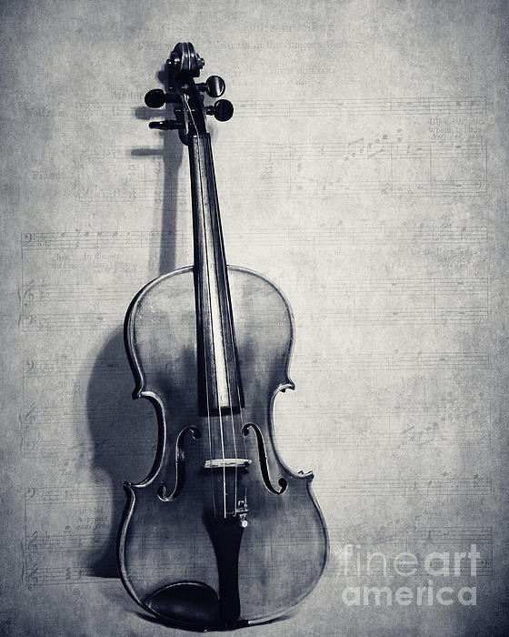 Violin Solo In Black And White By Emily Kay
