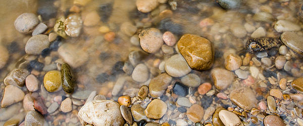 Virgin River Pebbles Print by Adam Pender