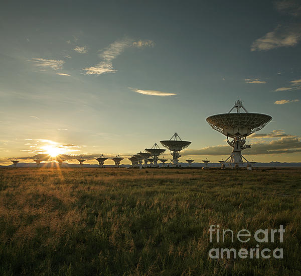 Vla At Sunset Print by Matt Tilghman