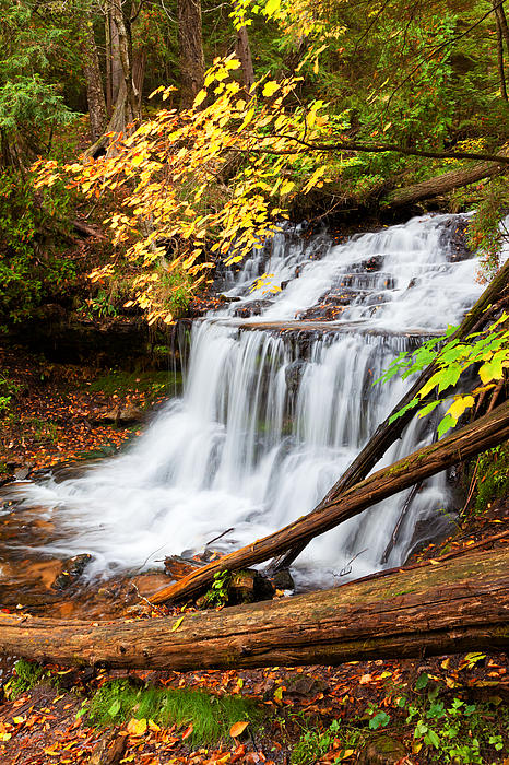 Wagner Falls In Autumn Print by Craig Sterken