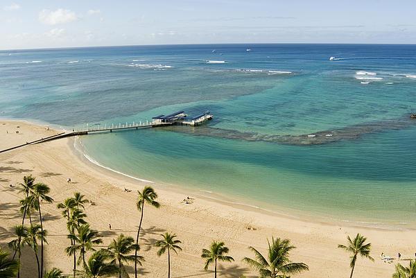 Waikiki Beach By Leann Williams Pittman