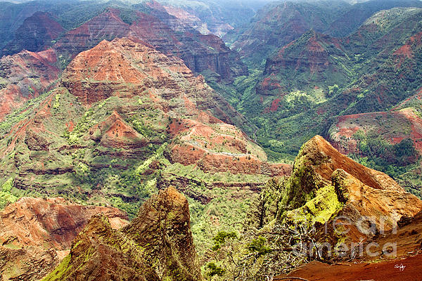 Waimea Canyon Print by Scott Pellegrin